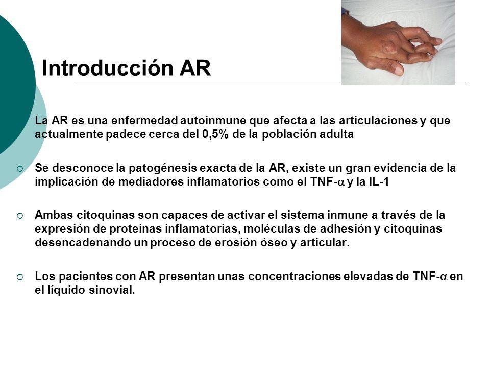 Introducción AR La AR es una enfermedad autoinmune que afecta a las articulaciones y que actualmente padece cerca del 0,5% de la población adulta.