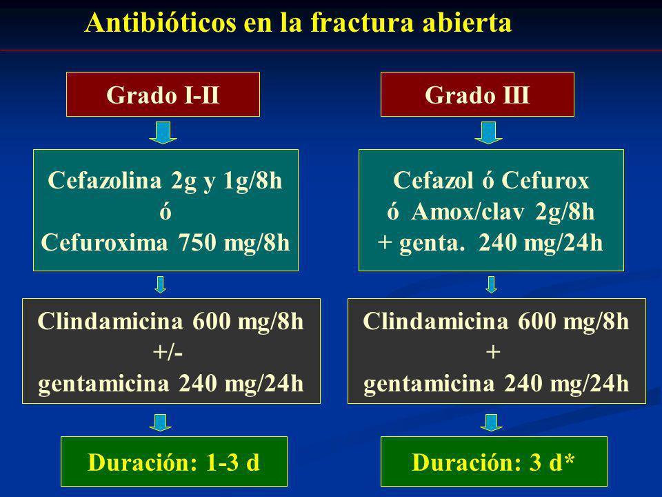 Antibióticos en la fractura abierta