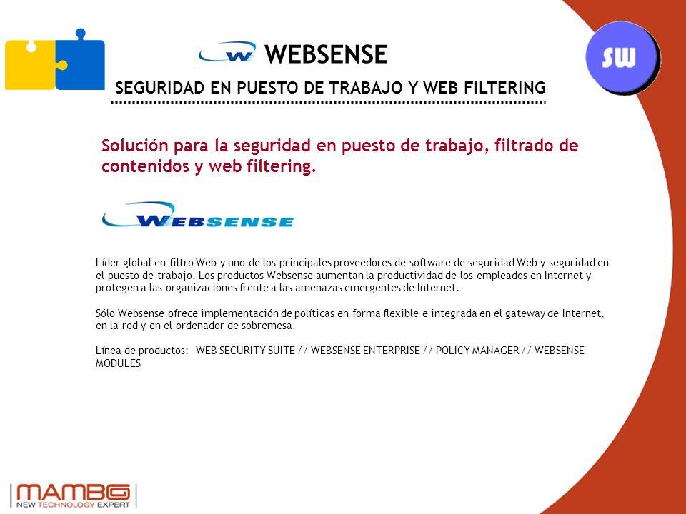 WEBSENSE SEGURIDAD EN PUESTO DE TRABAJO Y WEB FILTERING