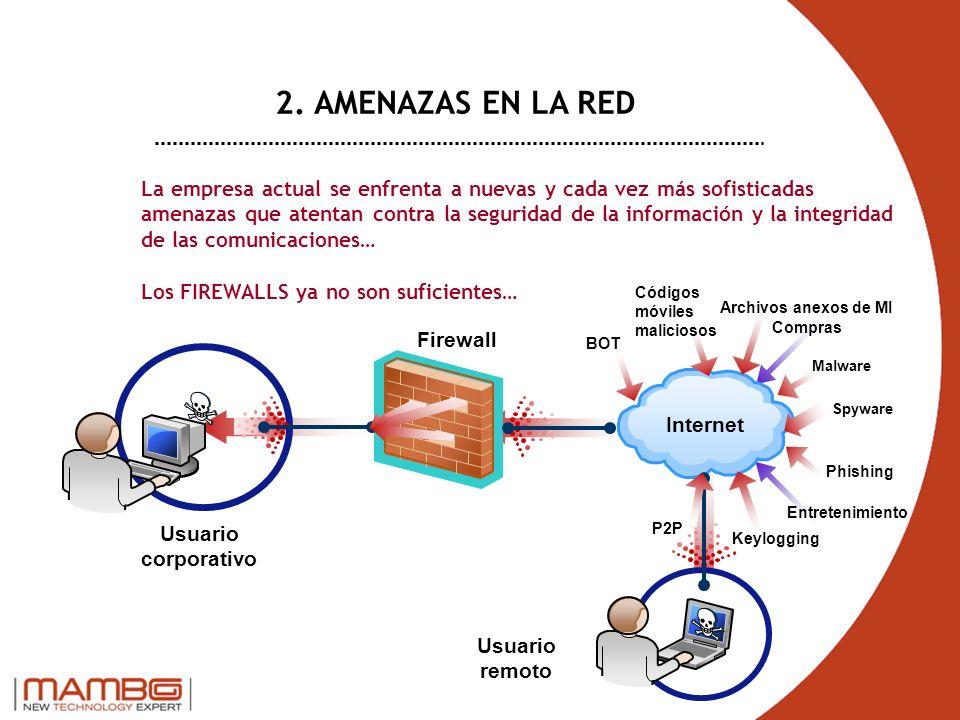 2. AMENAZAS EN LA RED