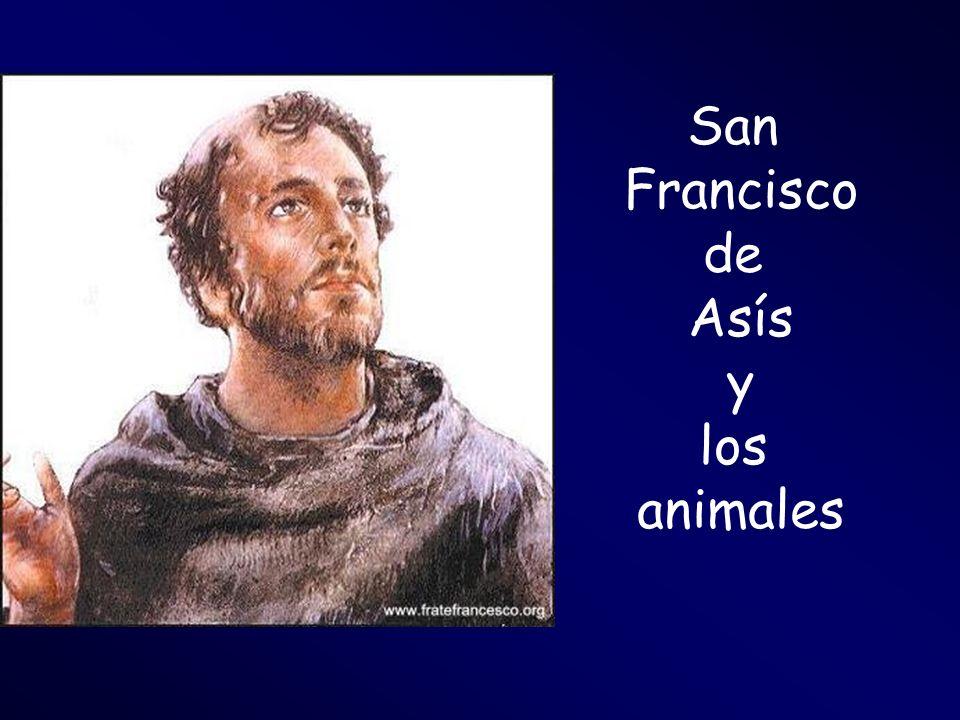 San Francisco de Asís y los animales