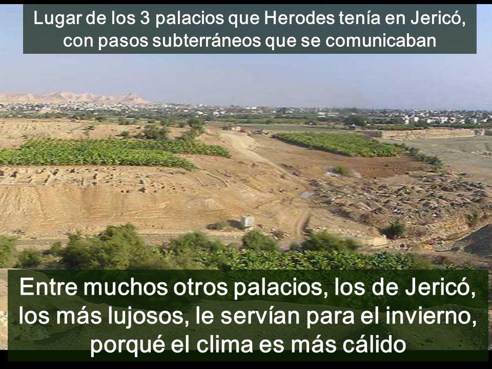 Lugar de los 3 palacios que Herodes tenía en Jericó, con pasos subterráneos que se comunicaban