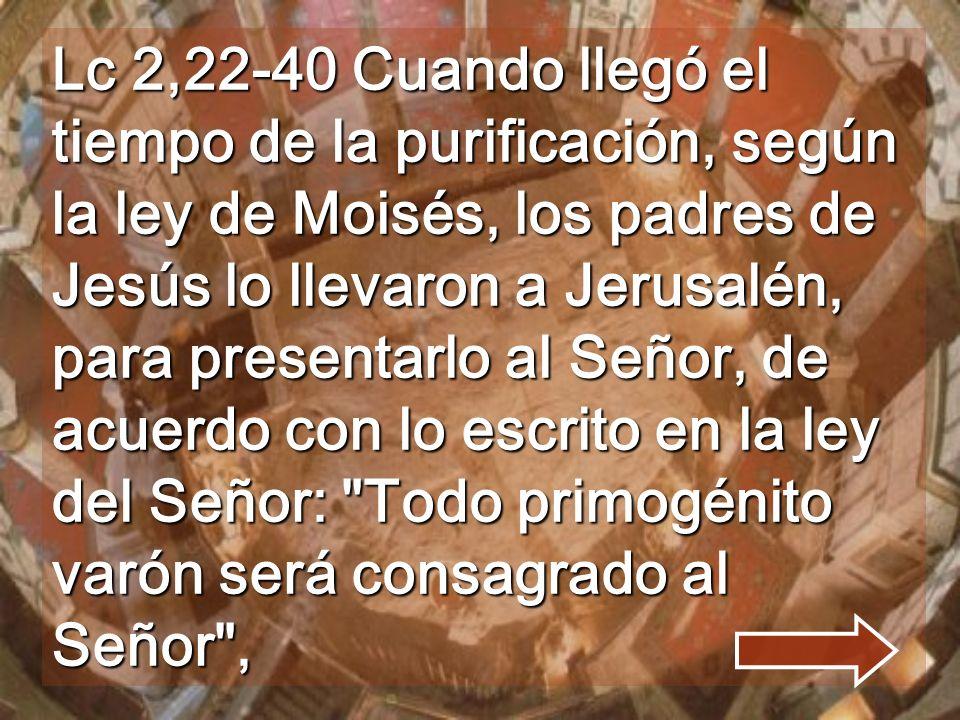 Lc 2,22-40 Cuando llegó el tiempo de la purificación, según la ley de Moisés, los padres de Jesús lo llevaron a Jerusalén, para presentarlo al Señor, de acuerdo con lo escrito en la ley del Señor: Todo primogénito varón será consagrado al Señor ,