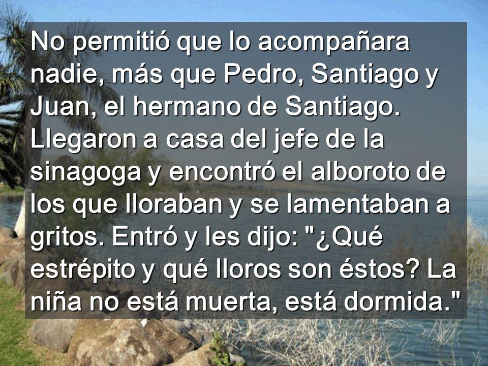 No permitió que lo acompañara nadie, más que Pedro, Santiago y Juan, el hermano de Santiago.