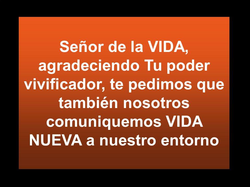 Señor de la VIDA, agradeciendo Tu poder vivificador, te pedimos que también nosotros comuniquemos VIDA NUEVA a nuestro entorno