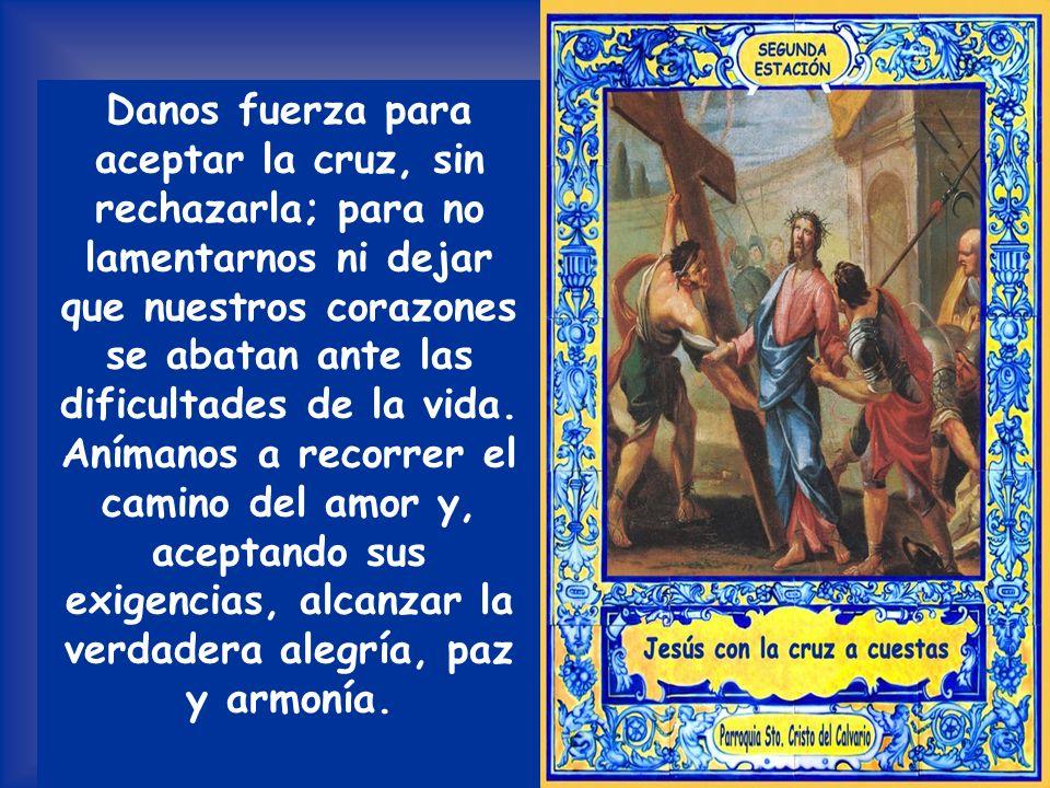 Danos fuerza para aceptar la cruz, sin rechazarla; para no lamentarnos ni dejar que nuestros corazones se abatan ante las dificultades de la vida.
