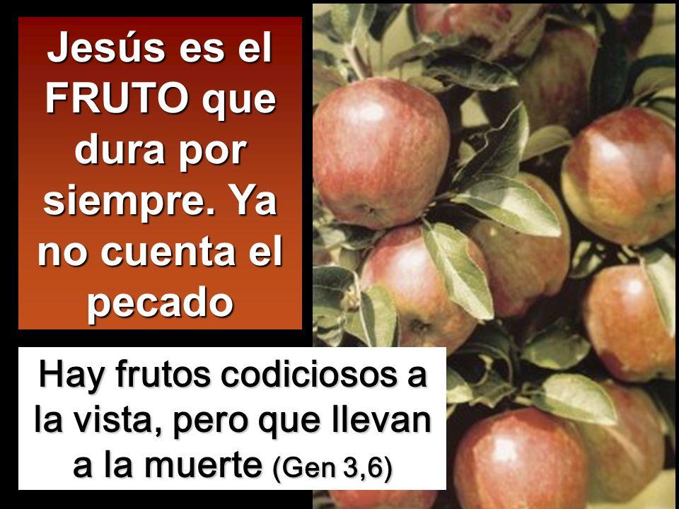 Jesús es el FRUTO que dura por siempre. Ya no cuenta el pecado
