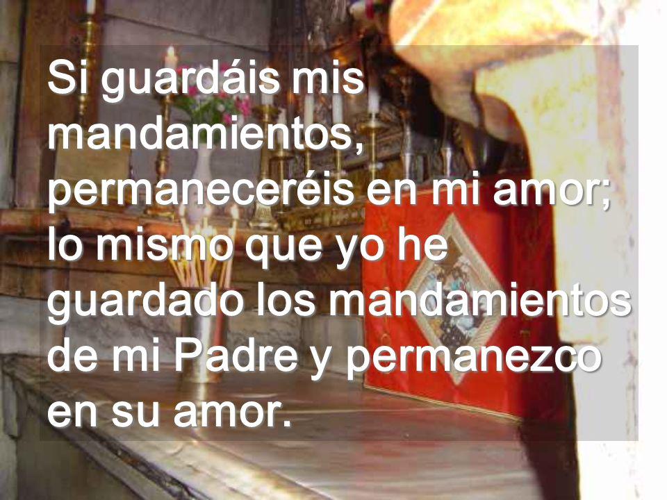 Si guardáis mis mandamientos, permaneceréis en mi amor; lo mismo que yo he guardado los mandamientos de mi Padre y permanezco en su amor.