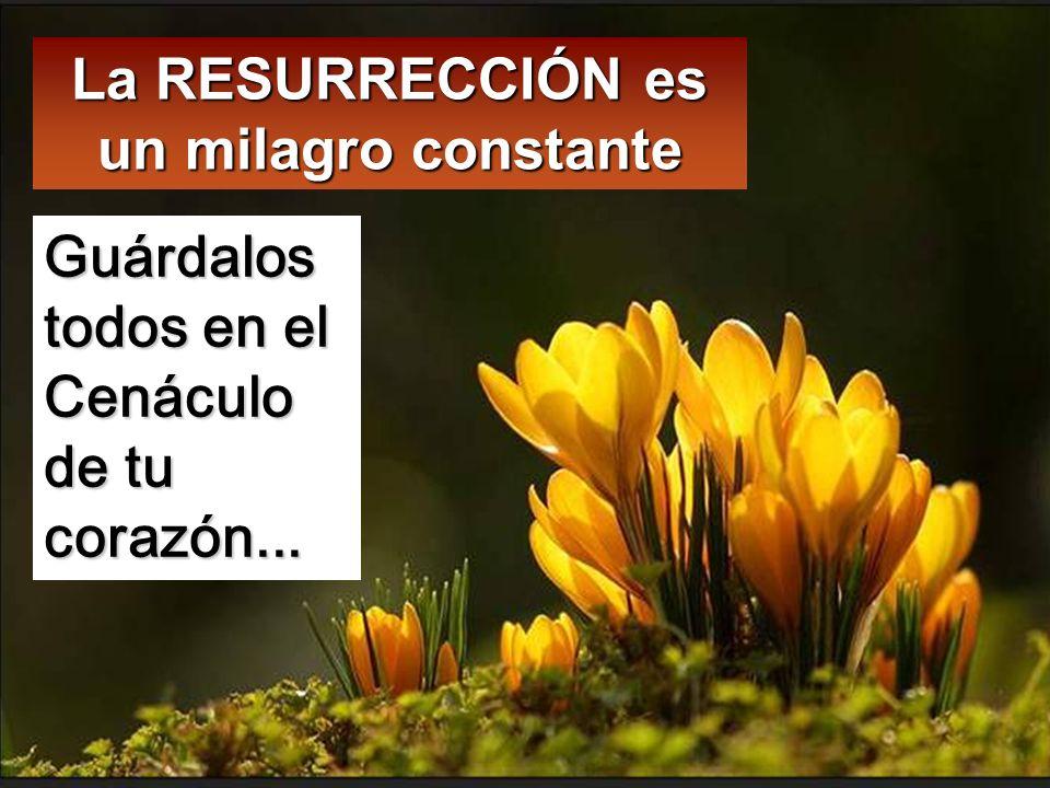 La RESURRECCIÓN es un milagro constante