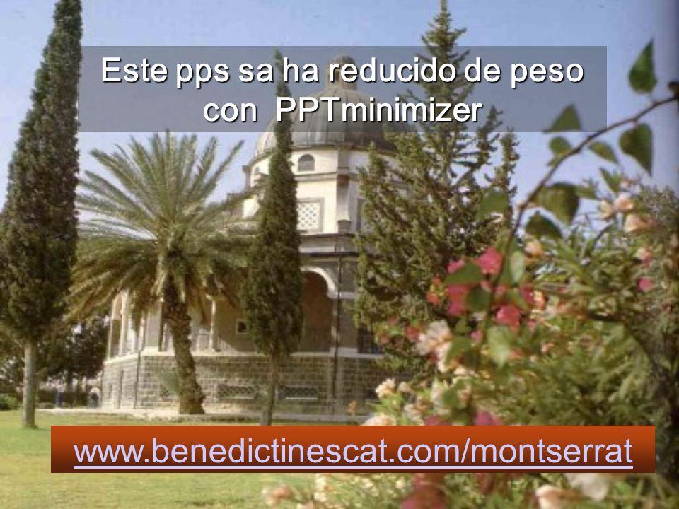 Este pps sa ha reducido de peso con PPTminimizer