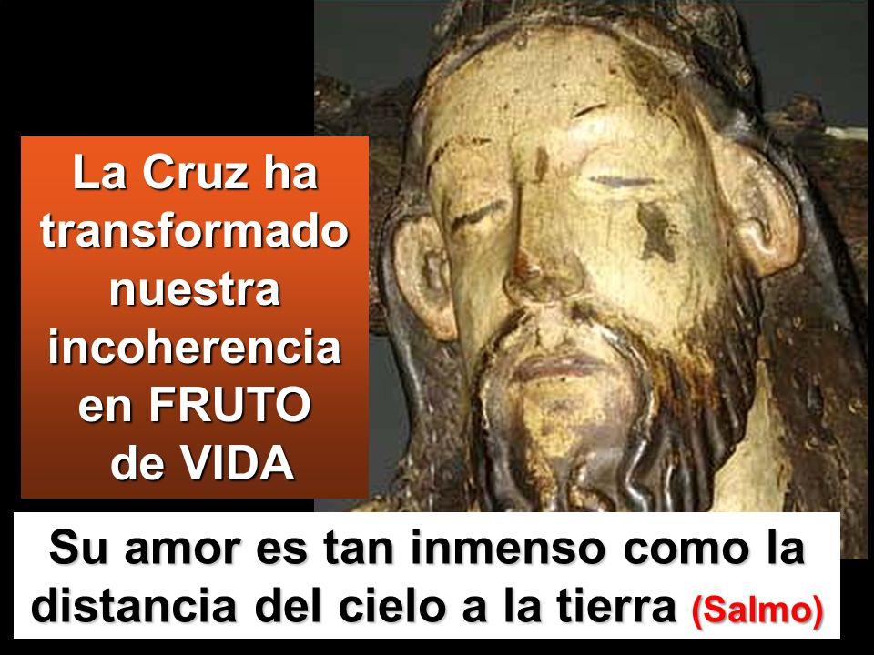 La Cruz ha transformado nuestra incoherencia en FRUTO de VIDA