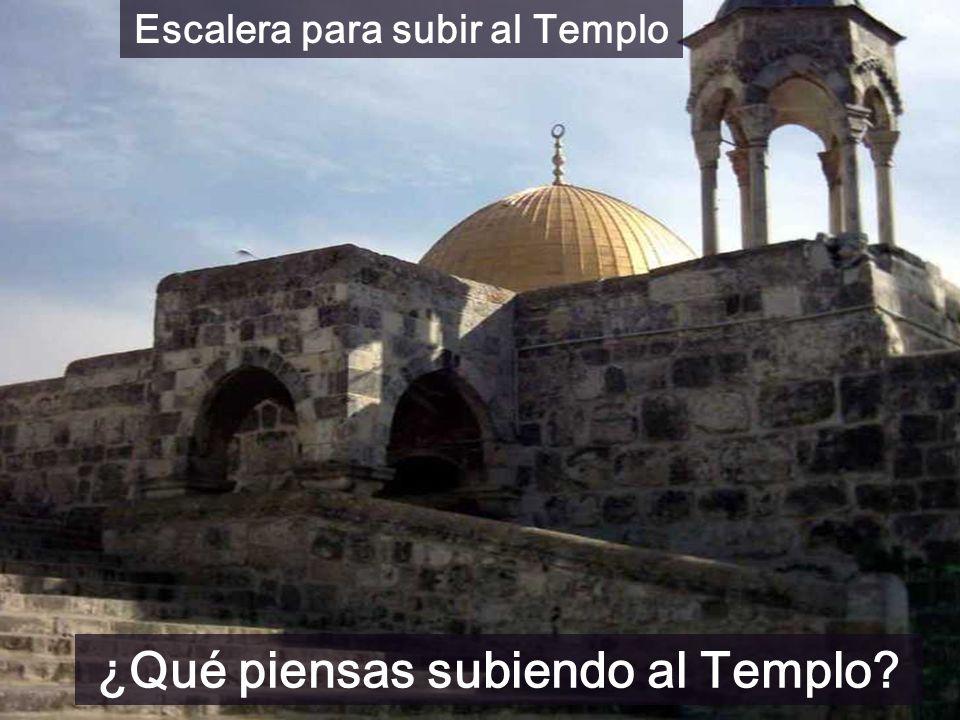 Escalera para subir al Templo ¿Qué piensas subiendo al Templo