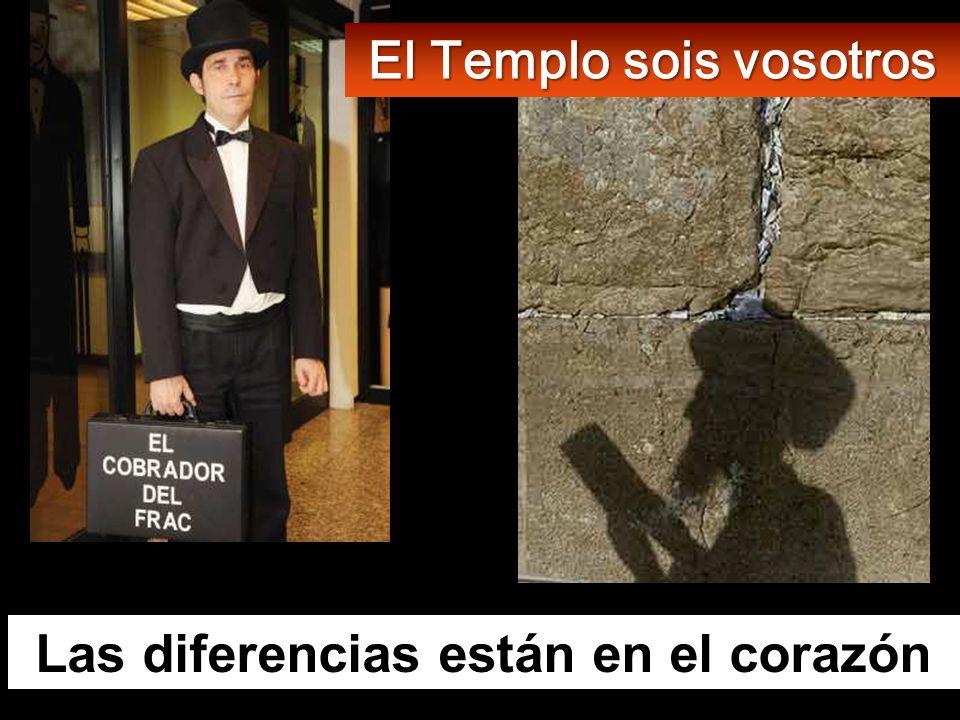 El Templo sois vosotros Las diferencias están en el corazón