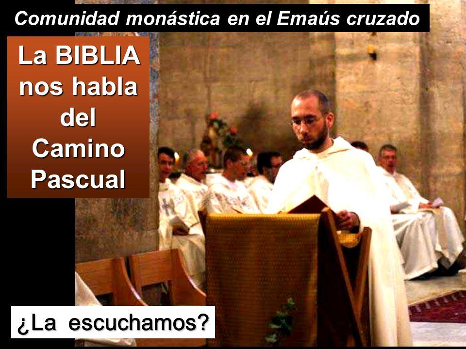 La BIBLIA nos habla del Camino Pascual