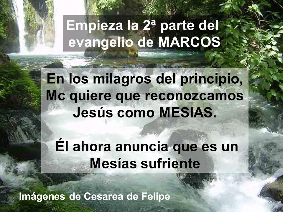 Empieza la 2ª parte del evangelio de MARCOS