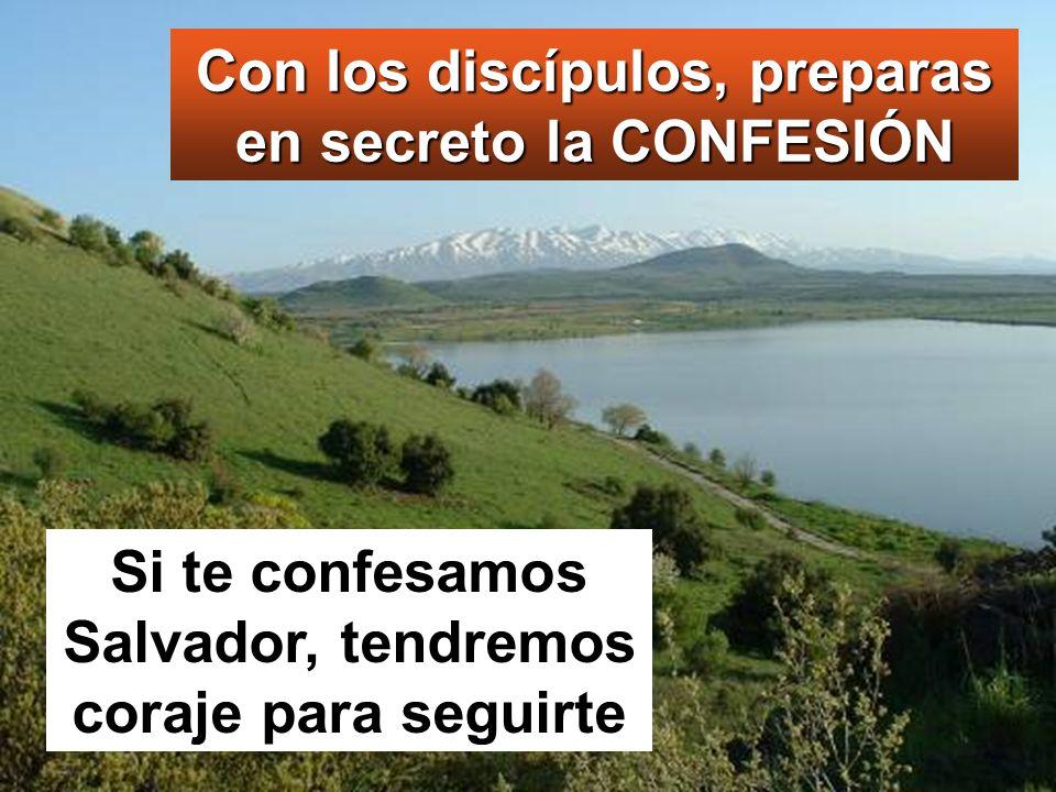 Con los discípulos, preparas en secreto la CONFESIÓN