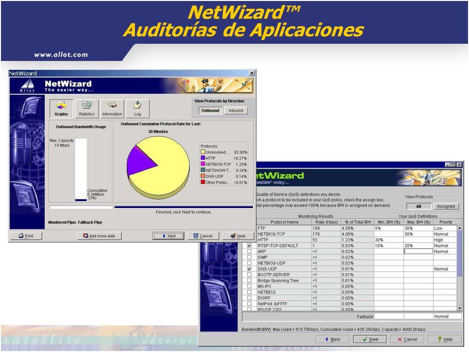 NetWizard™ Auditorías de Aplicaciones