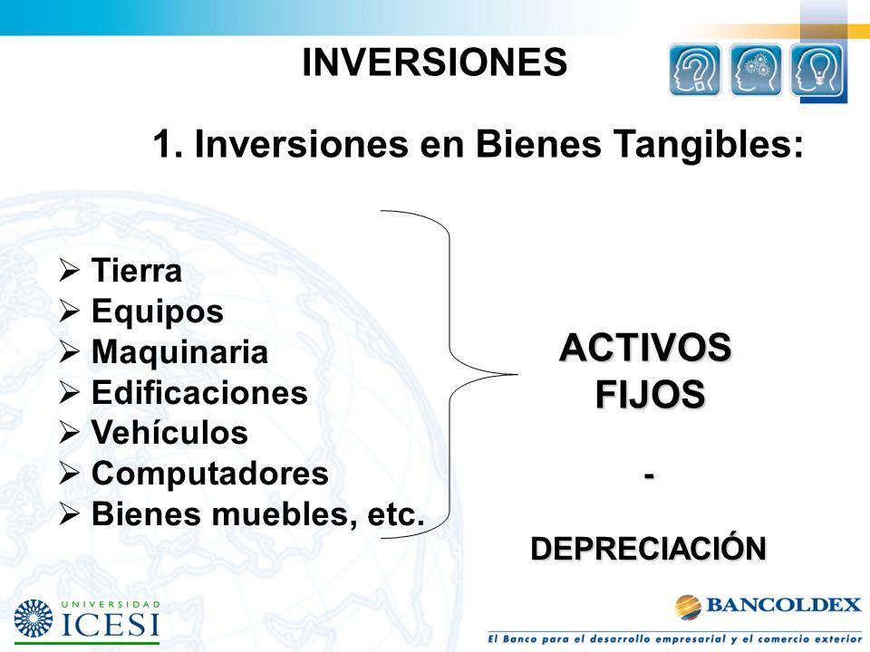 INVERSIONES ACTIVOS FIJOS