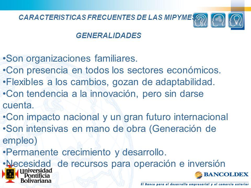 CARACTERISTICAS FRECUENTES DE LAS MIPYMES. GENERALIDADES