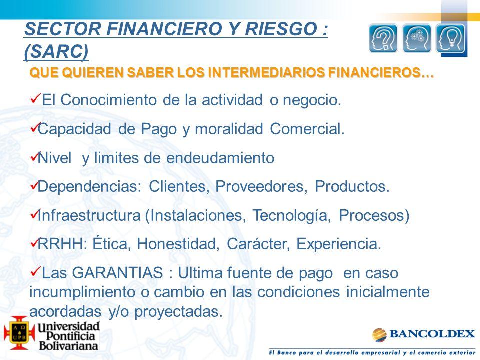 SECTOR FINANCIERO Y RIESGO : (SARC)