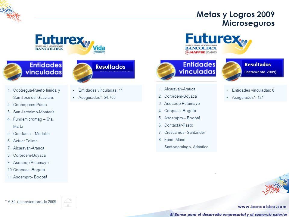 Metas y Logros 2009 Microseguros Resultados Resultados