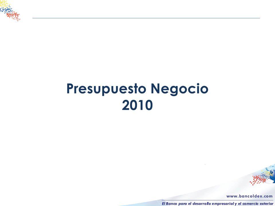 Presupuesto Negocio 2010