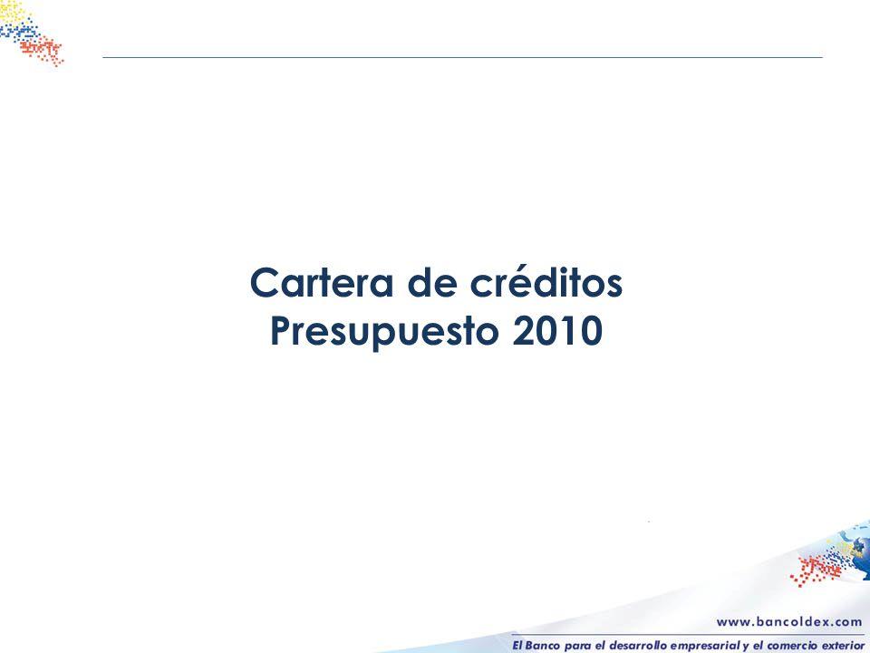 Cartera de créditos Presupuesto 2010