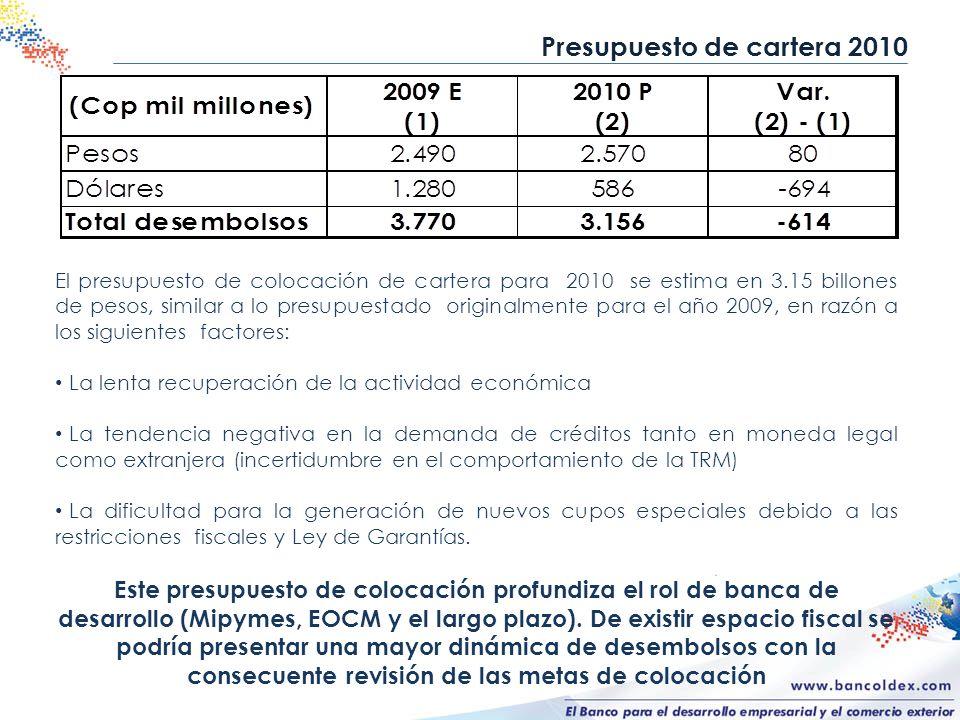 Presupuesto de cartera 2010