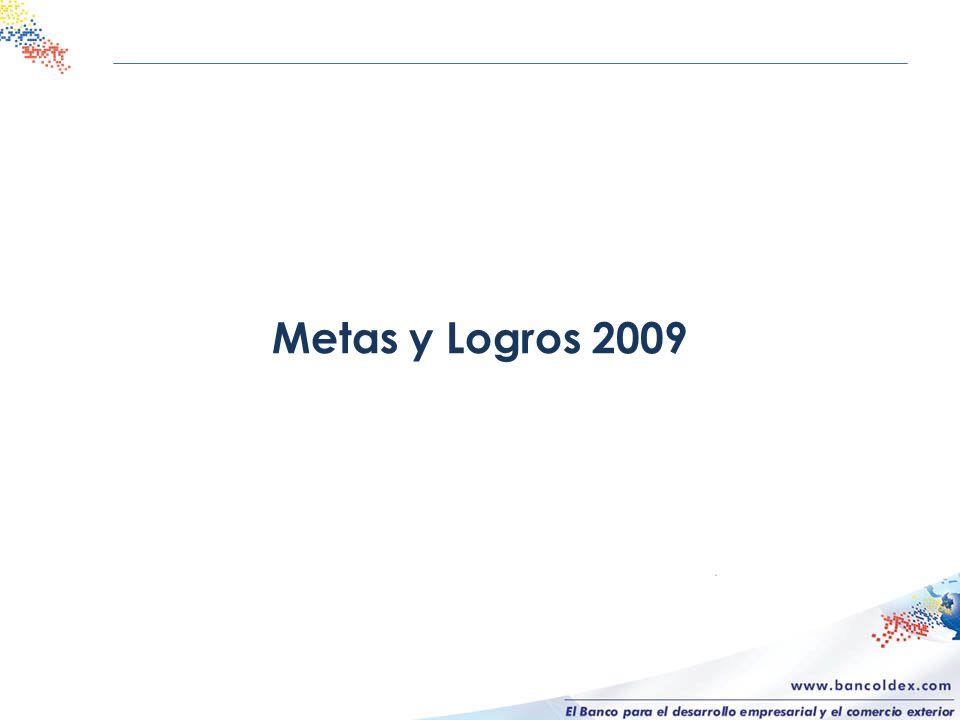 Metas y Logros 2009