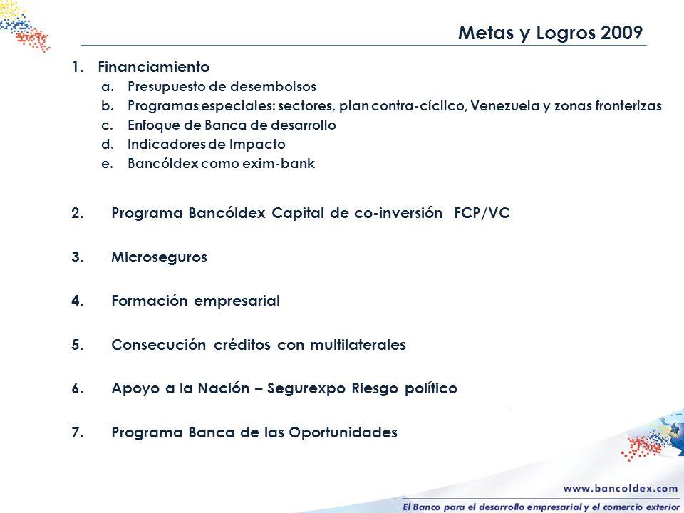 Metas y Logros 2009 Financiamiento