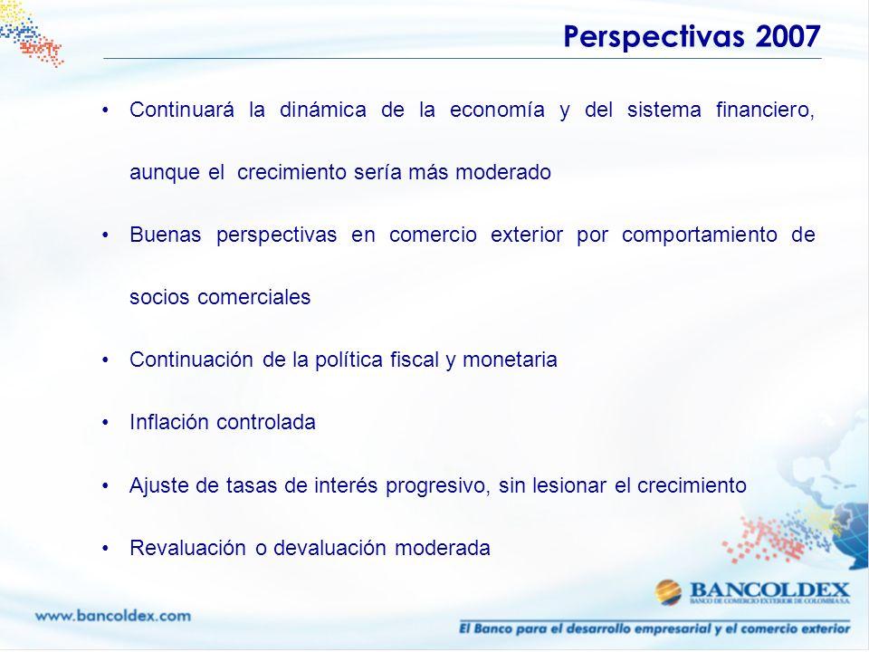 Perspectivas 2007 Continuará la dinámica de la economía y del sistema financiero, aunque el crecimiento sería más moderado.