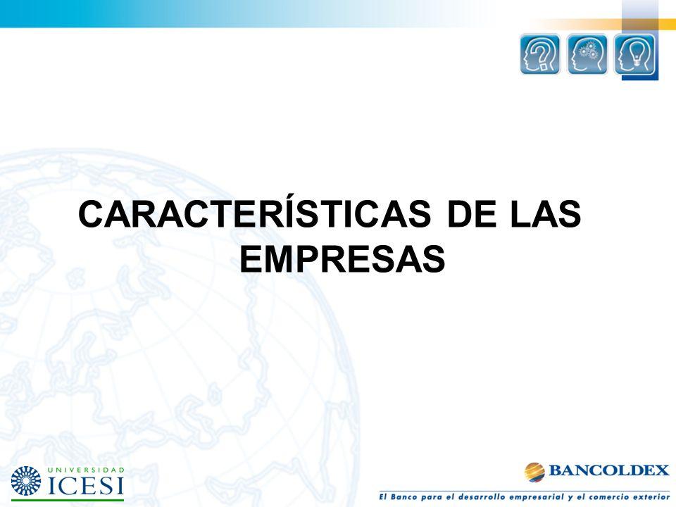 CARACTERÍSTICAS DE LAS EMPRESAS