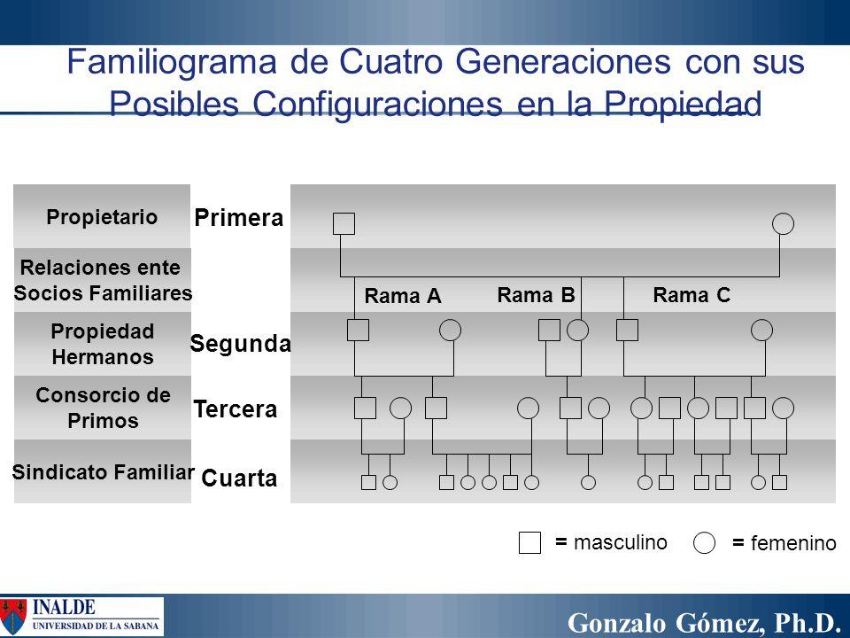 Familiograma de Cuatro Generaciones con sus Posibles Configuraciones en la Propiedad