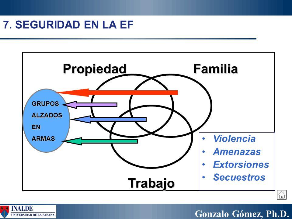 Propiedad Familia Trabajo 7. SEGURIDAD EN LA EF Violencia Amenazas