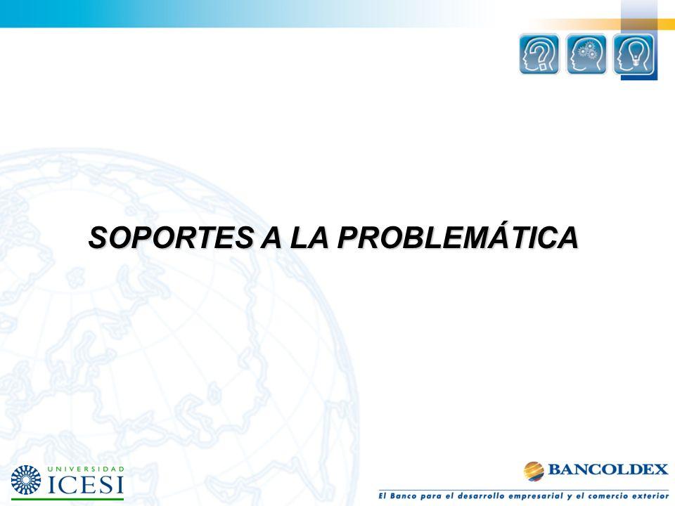 SOPORTES A LA PROBLEMÁTICA