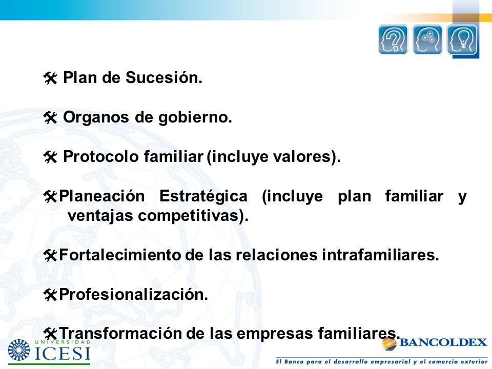  Plan de Sucesión.  Organos de gobierno.  Protocolo familiar (incluye valores).