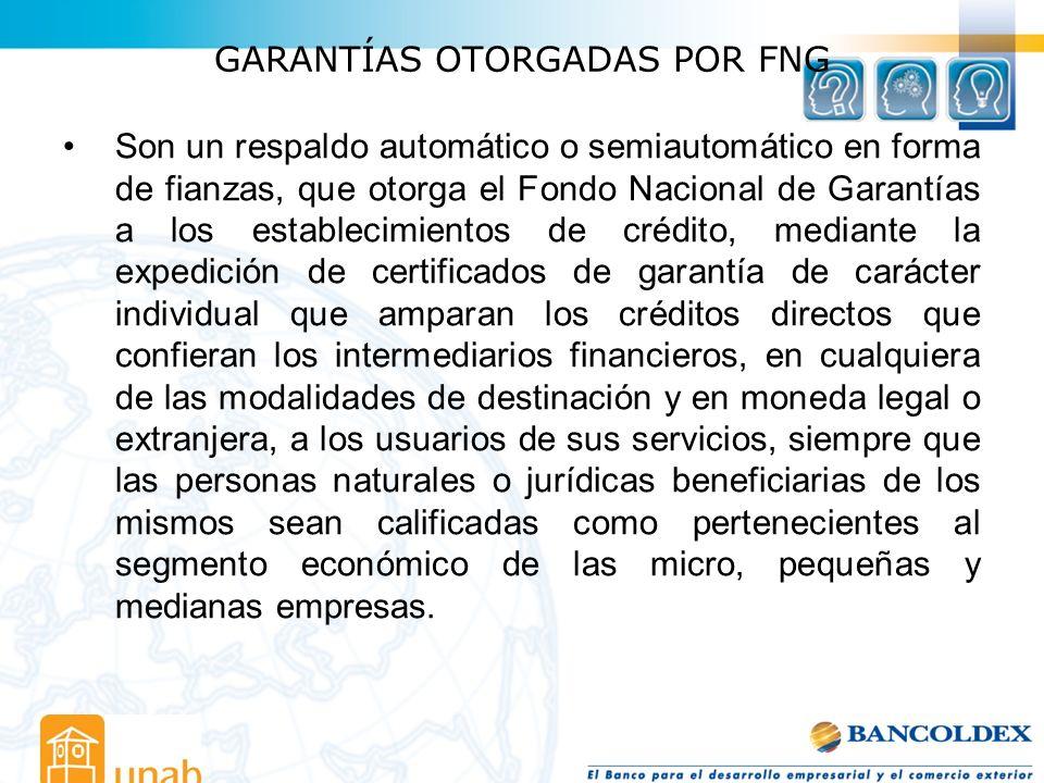 GARANTÍAS OTORGADAS POR FNG