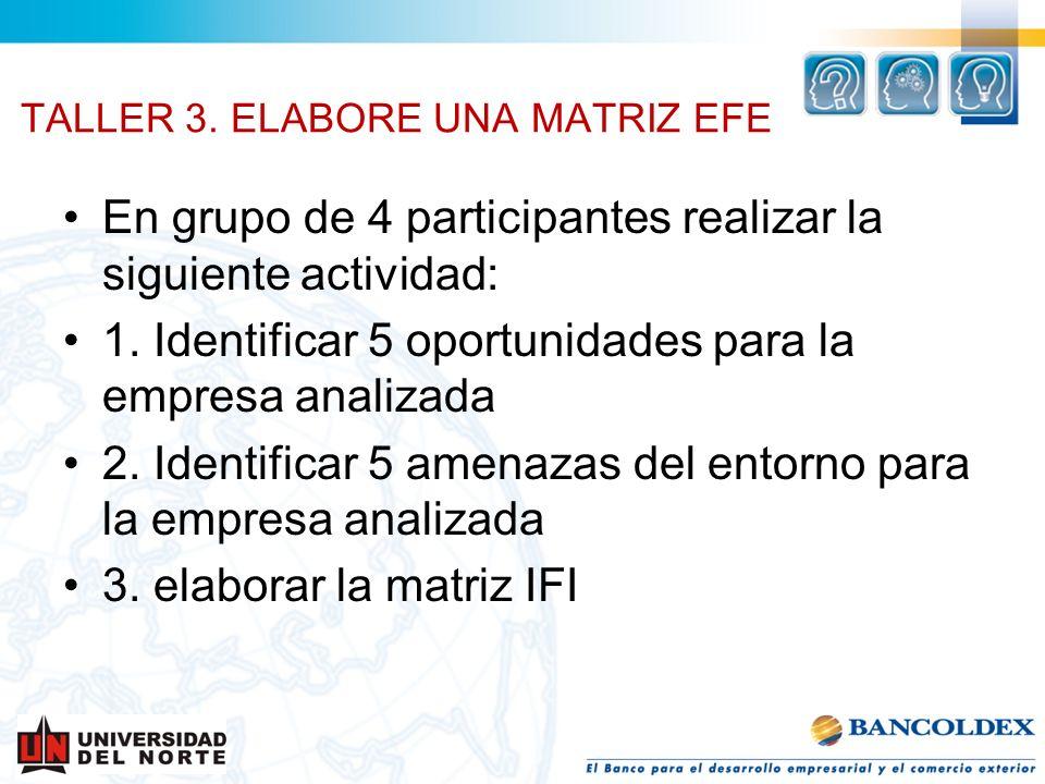 TALLER 3. ELABORE UNA MATRIZ EFE