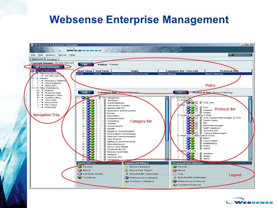 Websense Enterprise Management