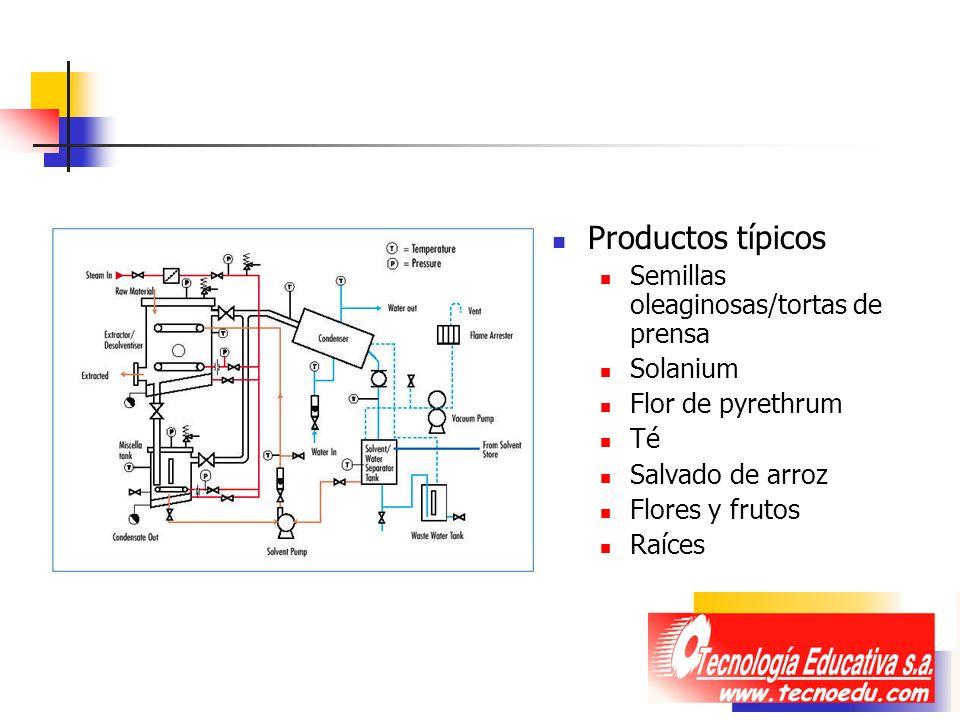Productos típicos Semillas oleaginosas/tortas de prensa Solanium
