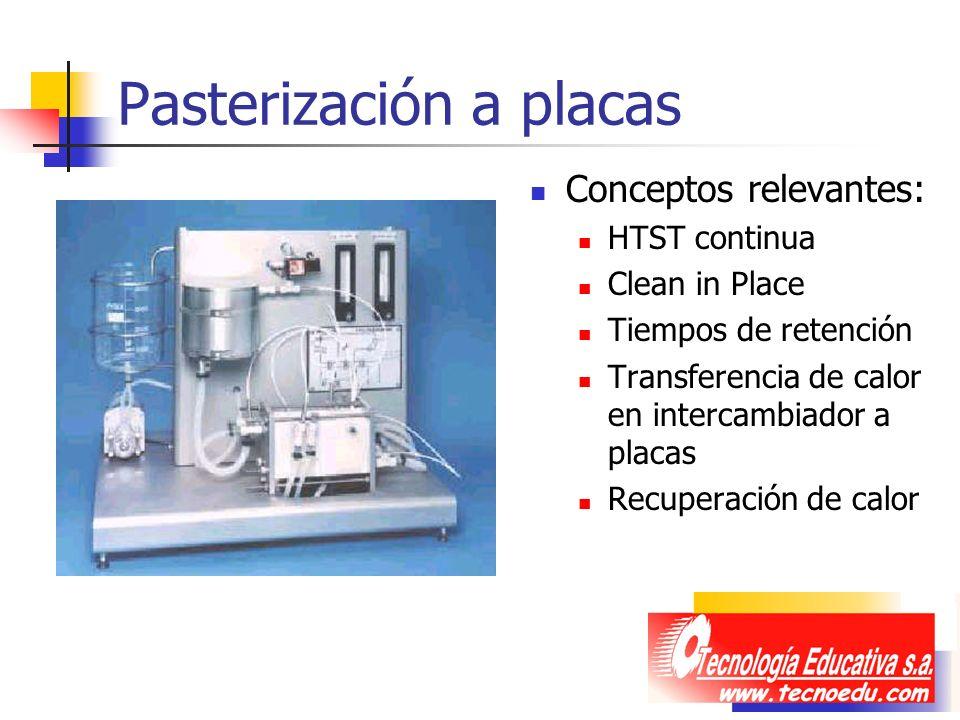 Pasterización a placas