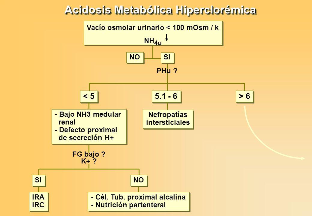 Acidosis Metabólica Hiperclorémica