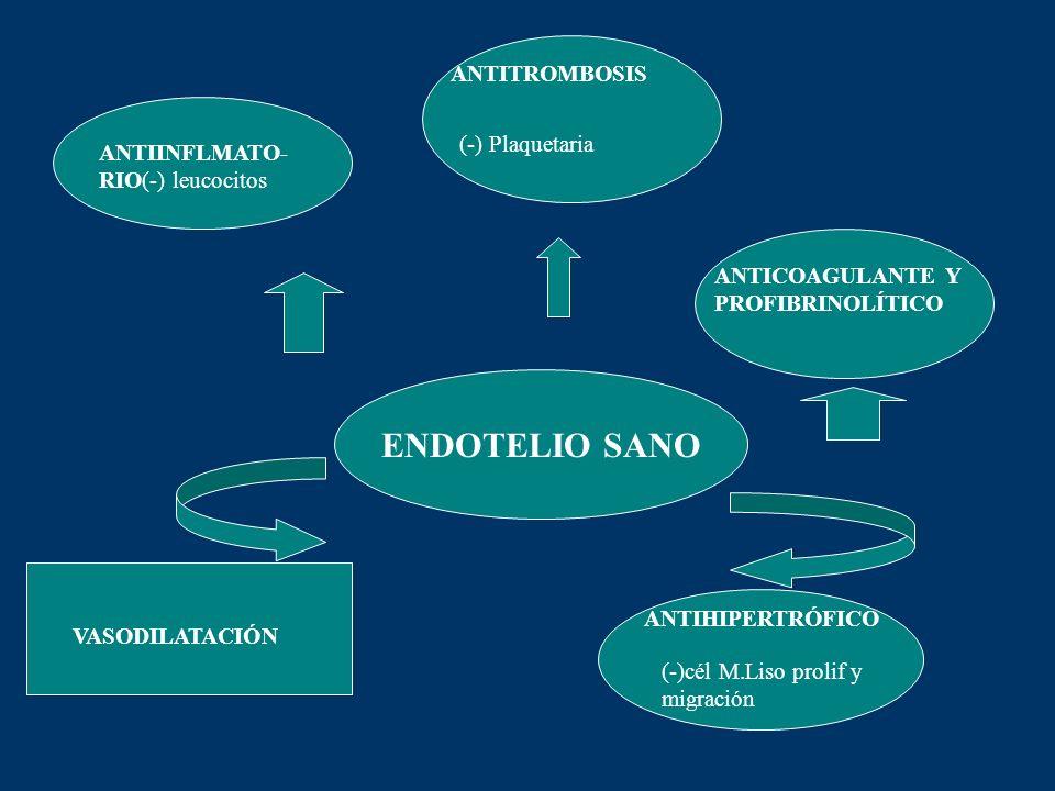 ENDOTELIO SANO ANTITROMBOSIS (-) Plaquetaria