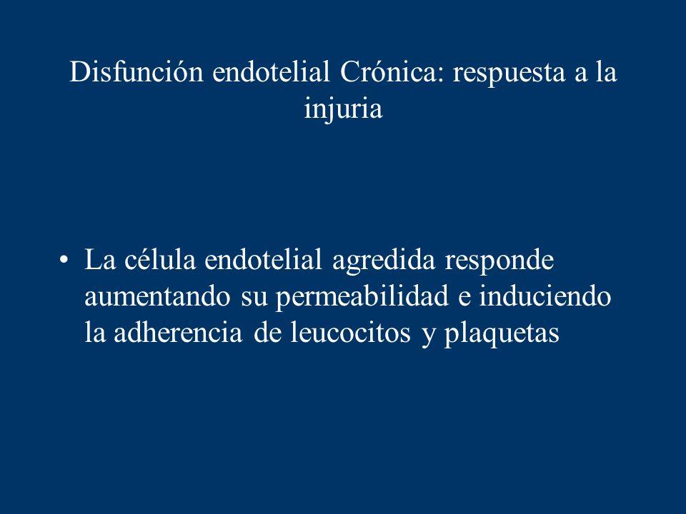 Disfunción endotelial Crónica: respuesta a la injuria