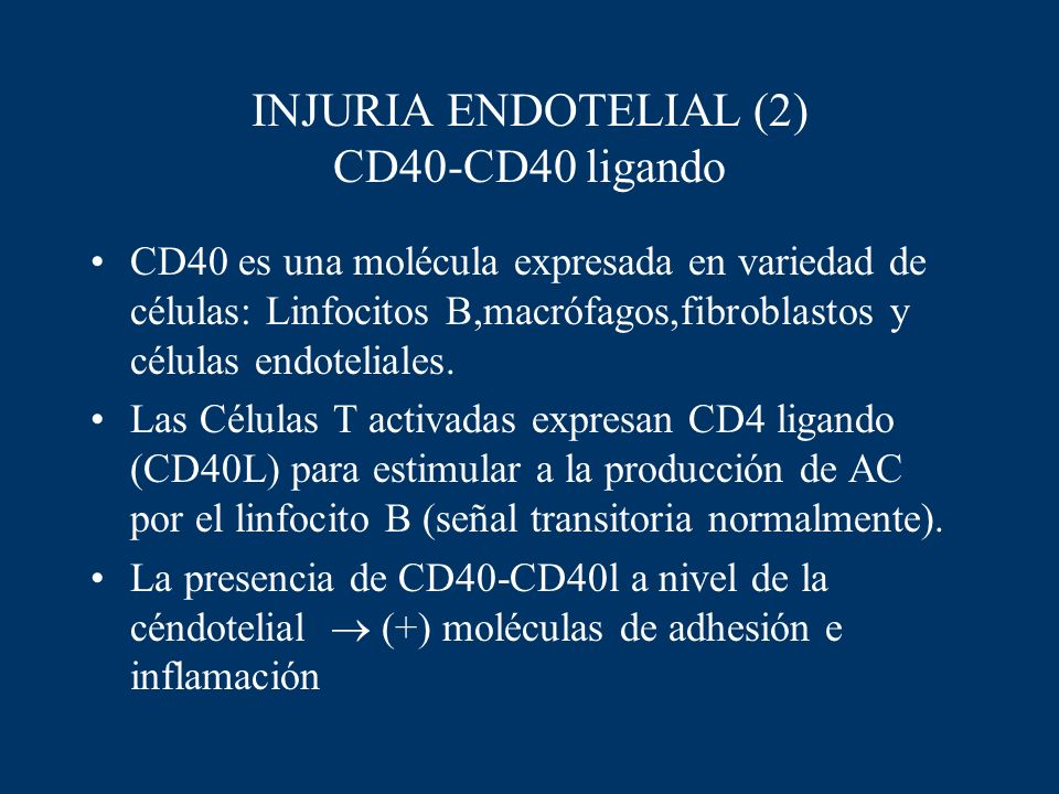 INJURIA ENDOTELIAL (2) CD40-CD40 ligando