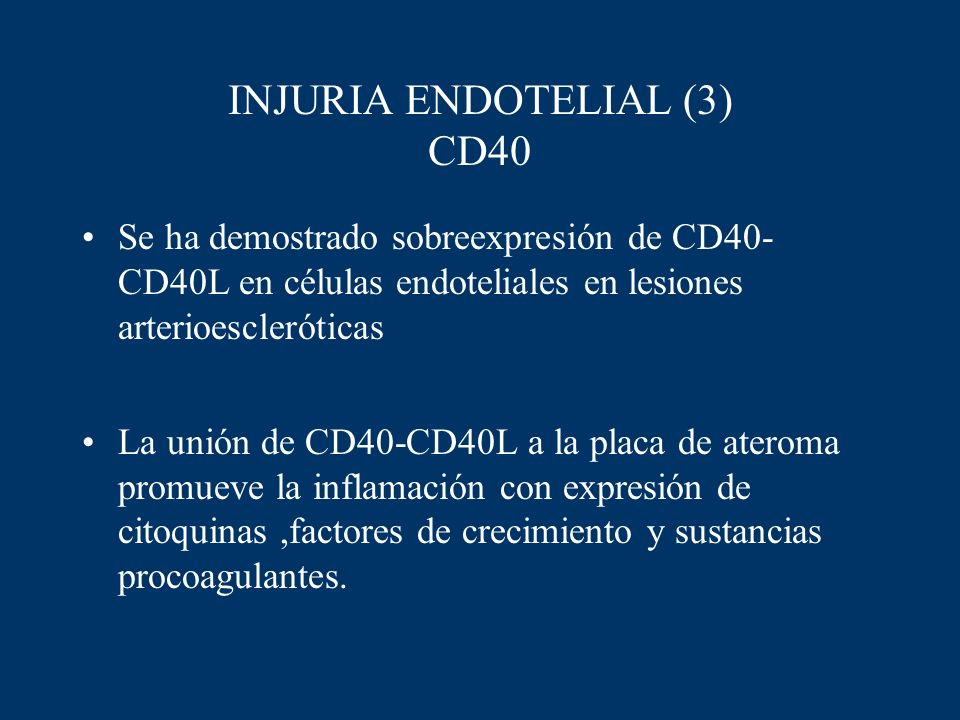 INJURIA ENDOTELIAL (3) CD40