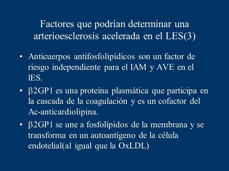 Factores que podrían determinar una arterioesclerosis acelerada en el LES(3)