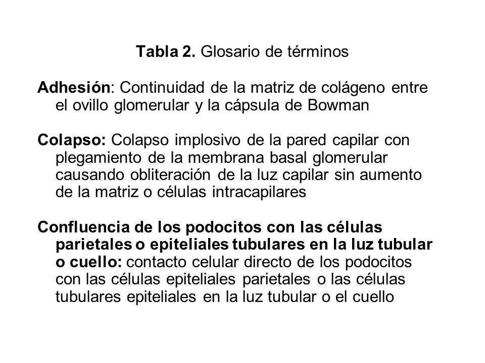 Tabla 2. Glosario de términos