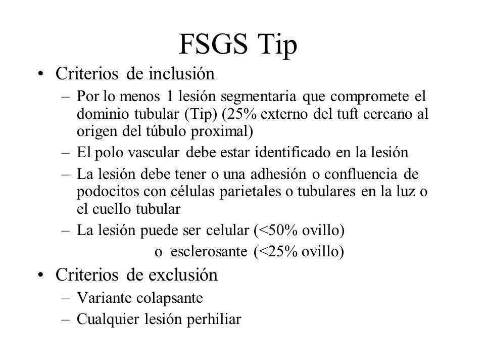 FSGS Tip Criterios de inclusión Criterios de exclusión