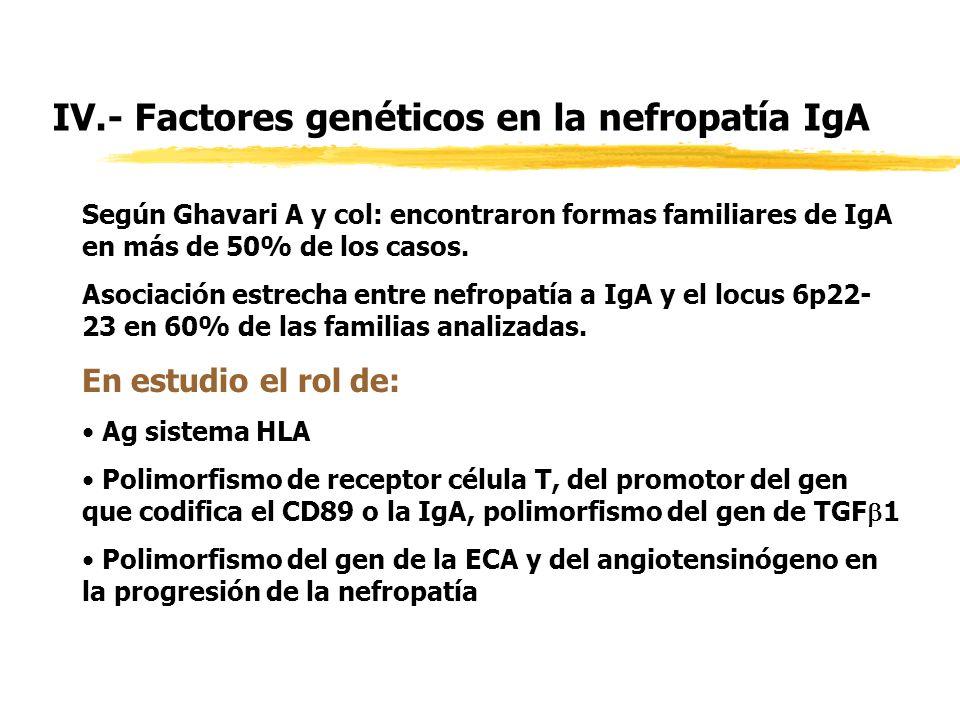 IV.- Factores genéticos en la nefropatía IgA